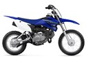 2021 TT-R110E