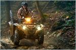 2017 Yamaha Grizzly EPS - Action