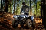 2017 Yamaha Grizzly EPS SE - Action SE