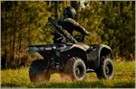 2018 Yamaha Grizzly EPS - Action Green