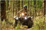 2018 Yamaha Grizzly EPS - Action Camo