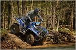 2019 Yamaha Kodiak 700 EPS SE - Action Blue
