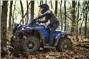 2019 Yamaha Kodiak 450 EPS SE - Action Blue