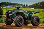 2019 Yamaha Kodiak 450 EPS - Beauty Green