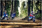 2019 Yamaha PW50 - Action Blue