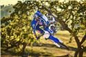 2020 Yamaha YZ250F - Action Blue