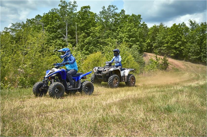2020 yamaha raptor 90 - action blue